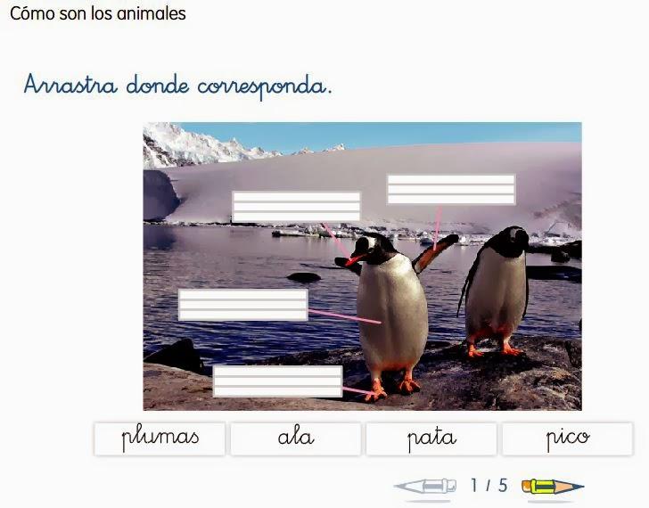 http://www.ceiploreto.es/sugerencias/cp.juan.de.la.cosa/1_2/cono/actividades/06/03/visor.html