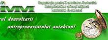 Atragerea remitenţelor în economia Moldovei.