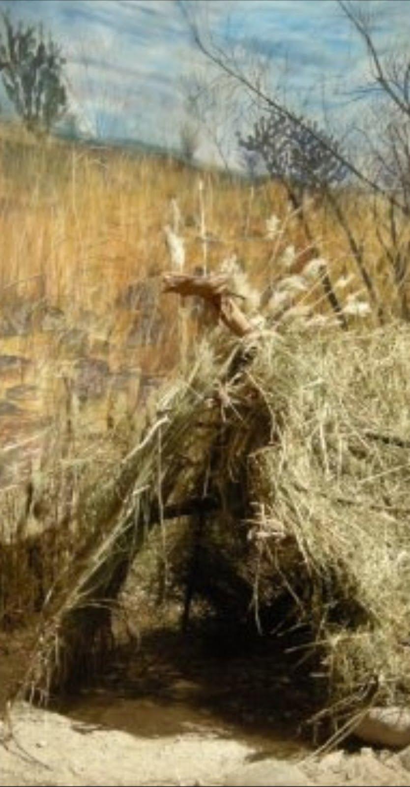 Arqueología e historia de Durango