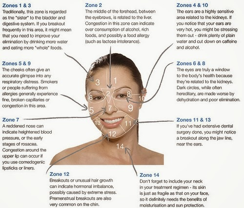 raw lovely acne face mapping what is your acne trying to tell you
