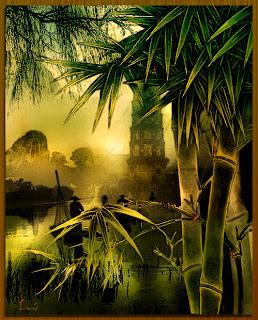 ¿Por qué...? el bambú crece tan rápidamente
