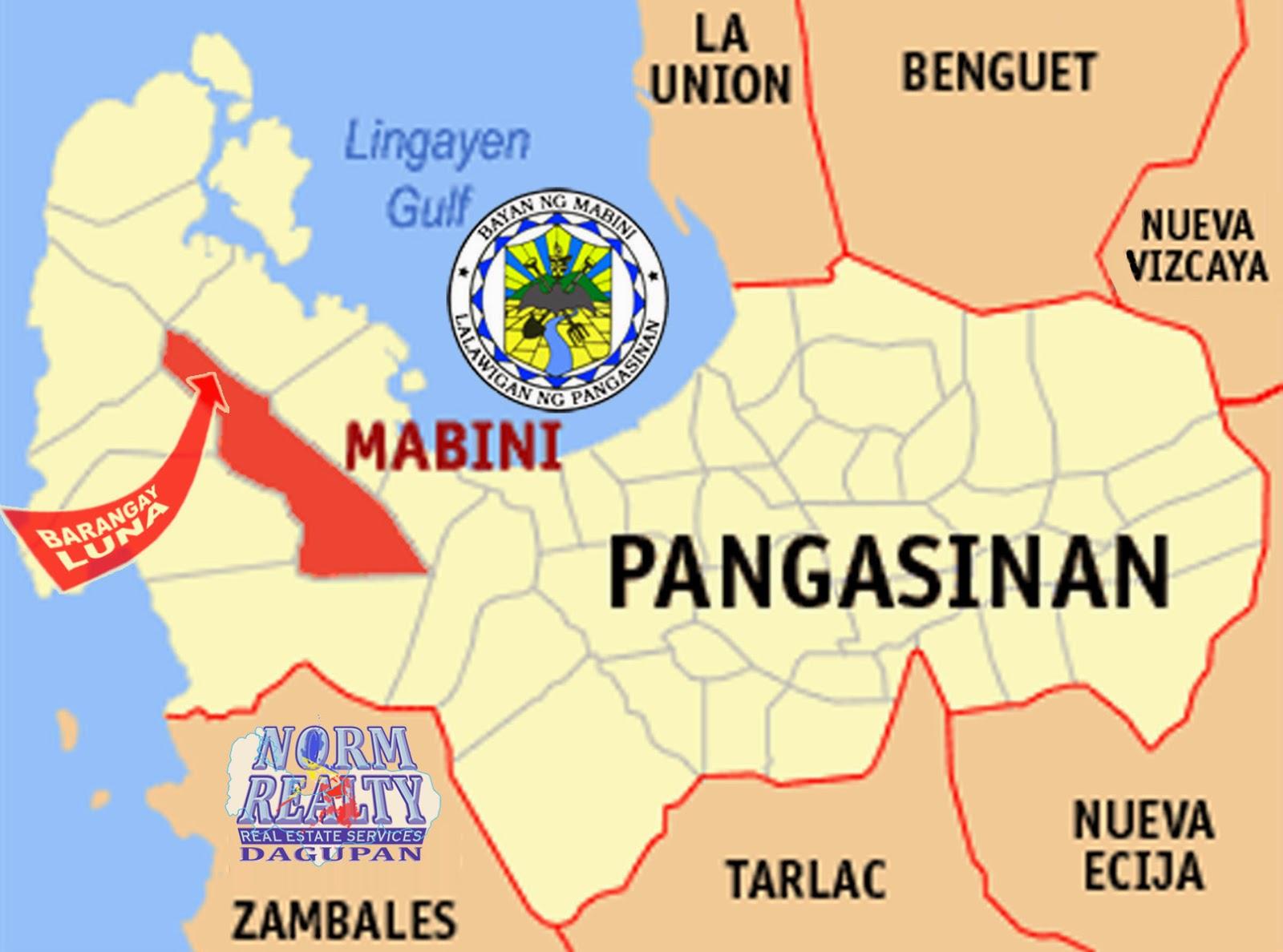 NormRealty Dagupan Mabini Pangasinan 21Hectare Land for