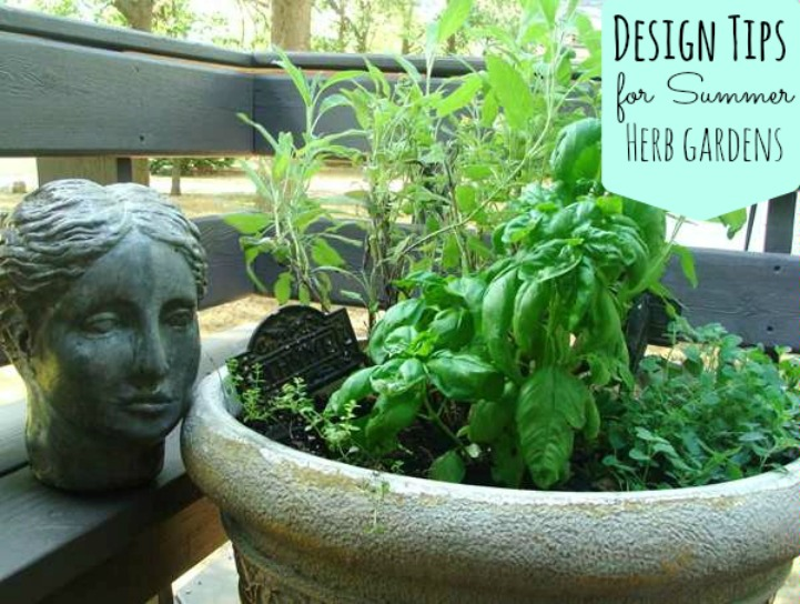 Stylish herb garden