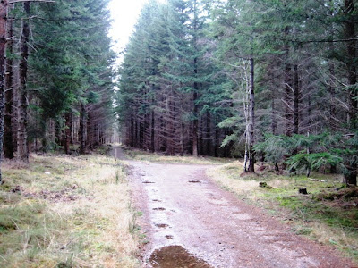 Walk along the path towards Ballater, Deeside