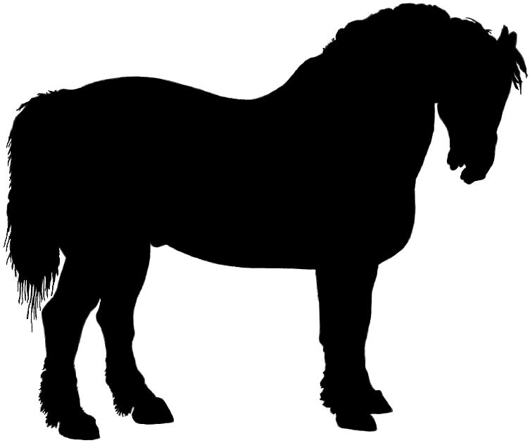 Paint Horse Silhouette Horse Head Silhouette