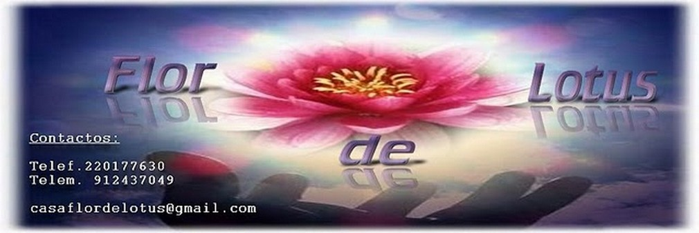 Flor de Lotus Maia