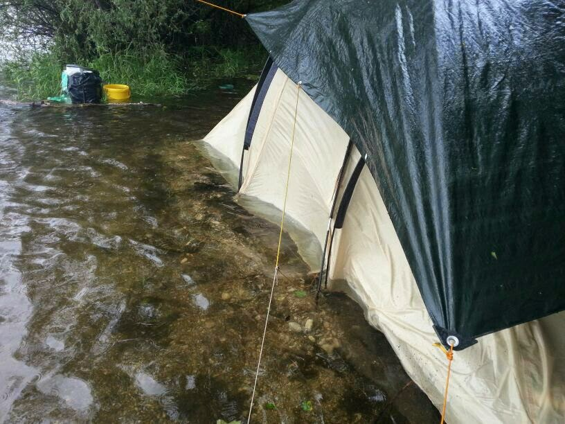 Zelt Für Regen : Karpfen hecht und co juni