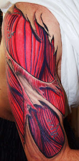 3d anatomical tattoo on the upper arm