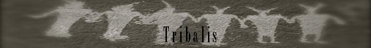 Tribalis