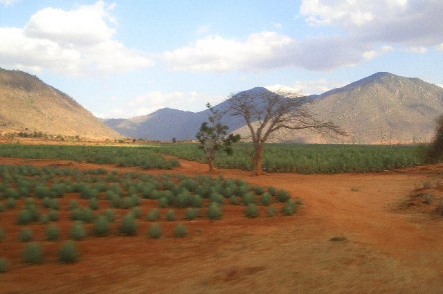 Dodoma Tanzania  city photos : Dodoma, Tanzania – Travel Guide and Travel Info   Tourist ...