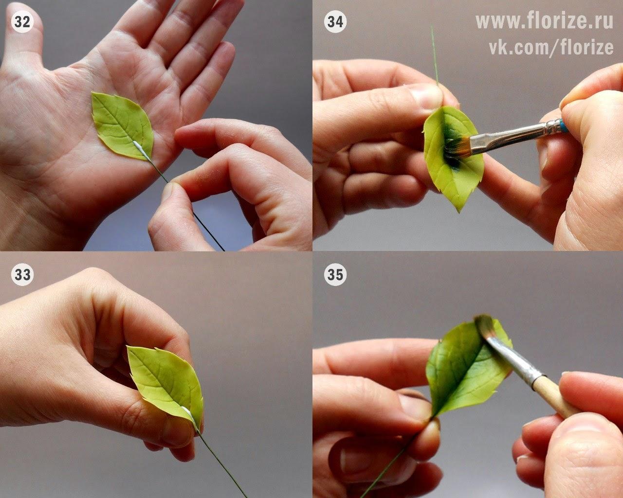 Скелетирование листьев в домашних условиях рецепт пошагово с