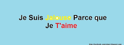 Couverture journal facebook jalousie