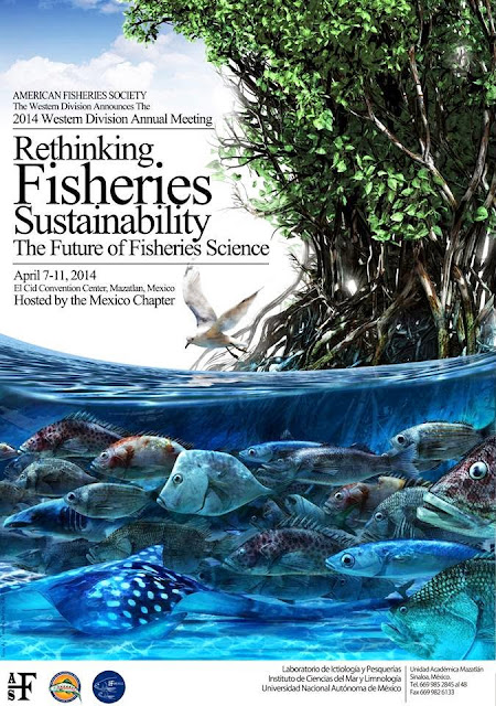 rethinking asian carp Rethinking risk: new approaches for managing risk and building resilience   out-of-sample validation for structured expert judgment of asian carp.