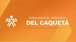 Informe Caquetá Audiencia Pública Participativa 2016- 2017
