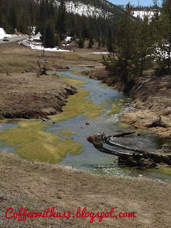 Stream in Yellowstone