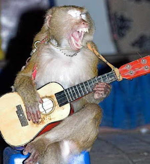 Macaco artista