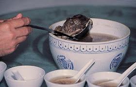 Orang Ini Membuat Menu Soup Terbuat Dari Janin [ www.BlogApaAja.com ]