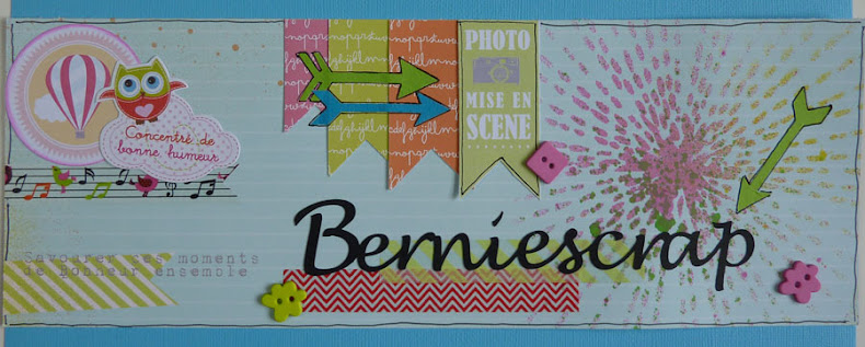 BernieScrap