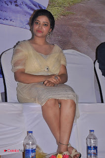 Swetha Basu Latest Picture Gallery Chandamama Movie Audio Launch ~ Celebs Next