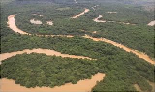 Llanos de Moxos en Bolivia