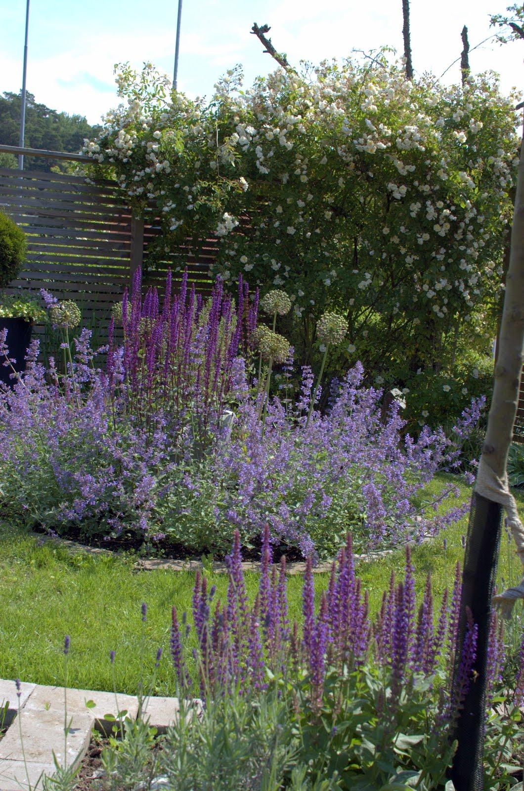 Trädgårdstoken på Facebook