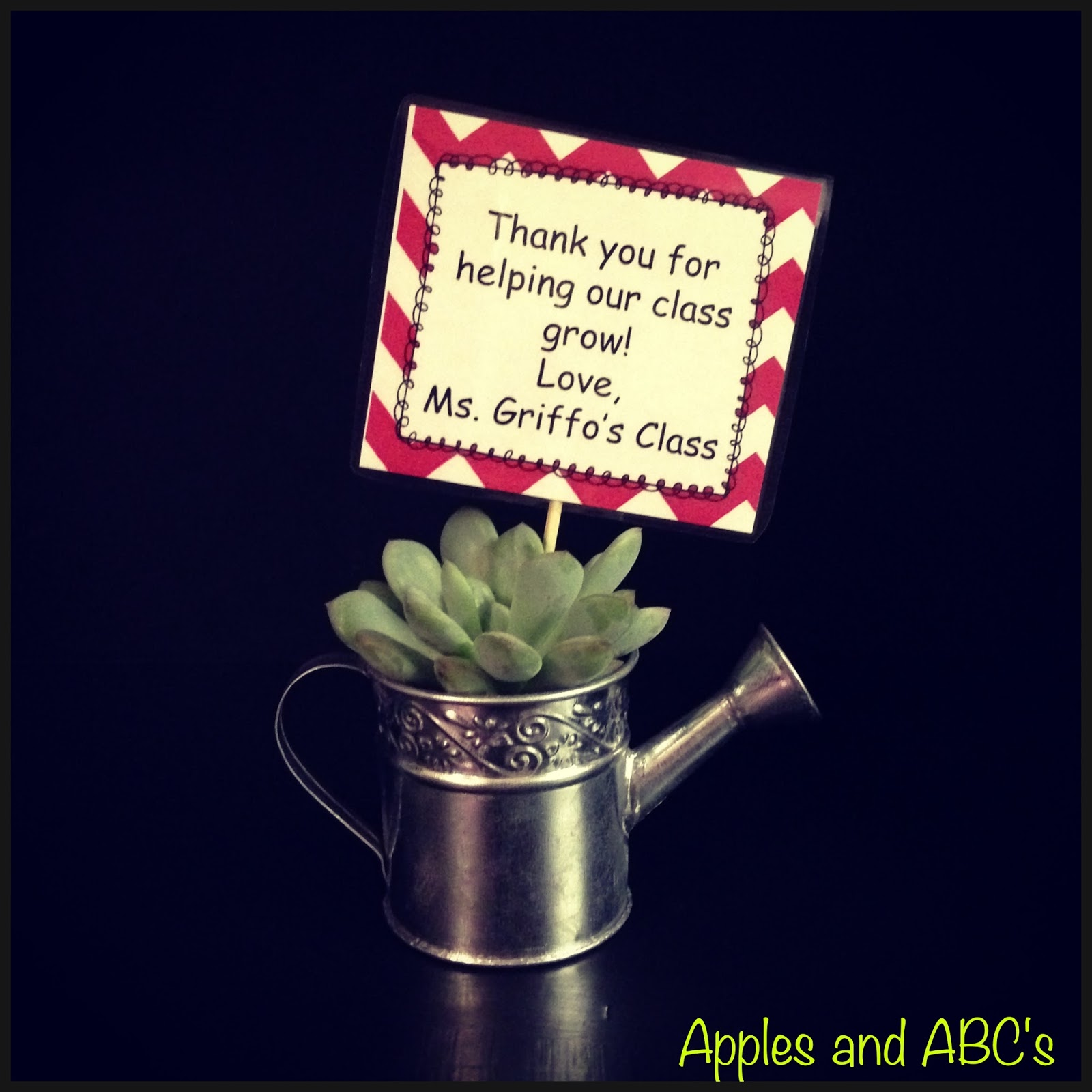 am obsessed with SUCCULENTS... Parent Gift Idea! - Apples and ABC's