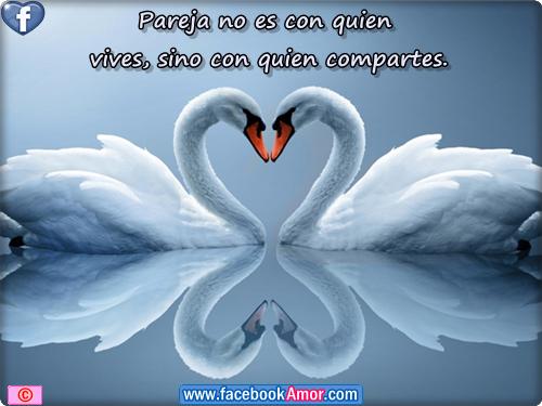 Postales Bonitas De Amor Para Perfil Facebook