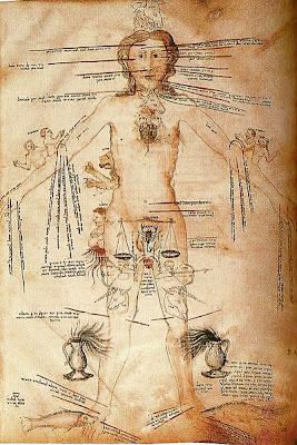 Manoscritto del XIV secolo descrivente l'influenza dei segni astrologici sul corpo umano