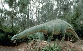 Reconstrucción de un Apatosaurus