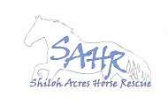 Shiloh Acres Horse Rescue