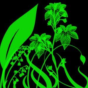 foliage-swirls