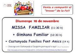 PROPERA MISSA FAMILIAR. DIUMENGE 10 DE NOVEMBRE A LES 11:30H