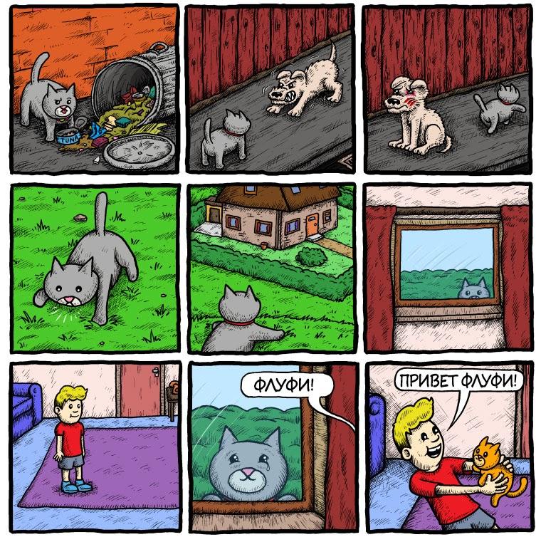 Приключения кота Флуфи