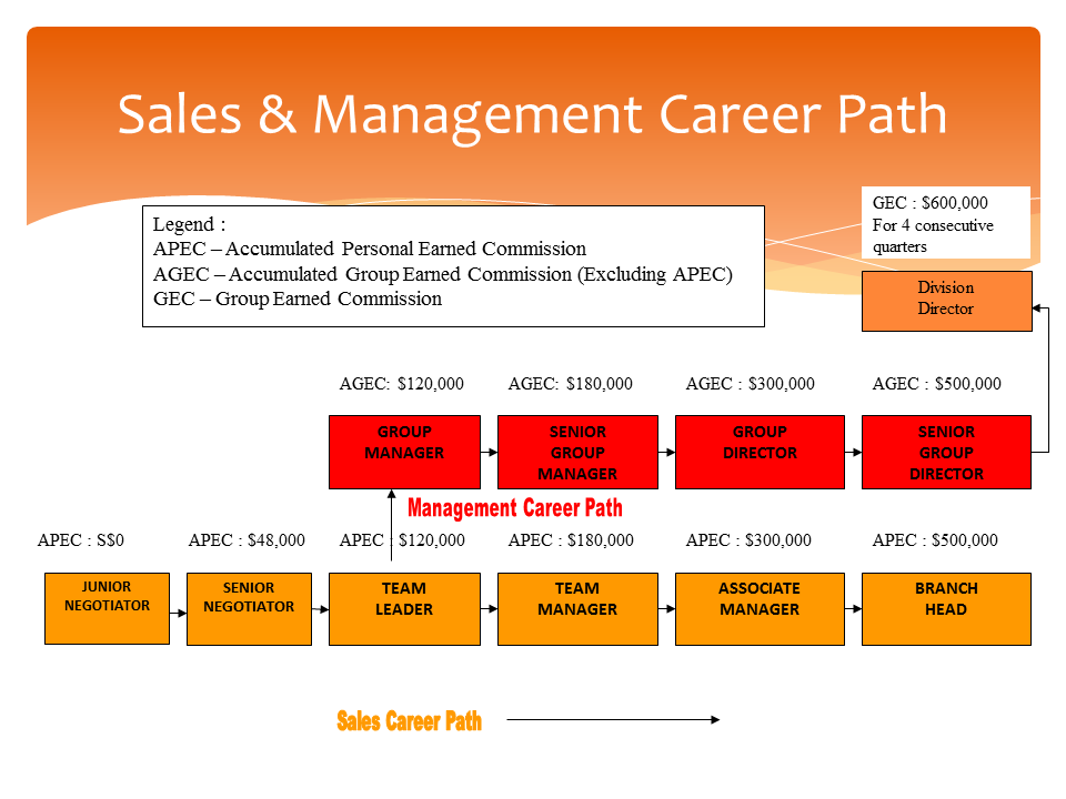 career path Scope— this article discusses the types of career paths and career ladders that an employer can use to assist employees in their career progression within the organization.