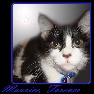 RIP Maurice.
