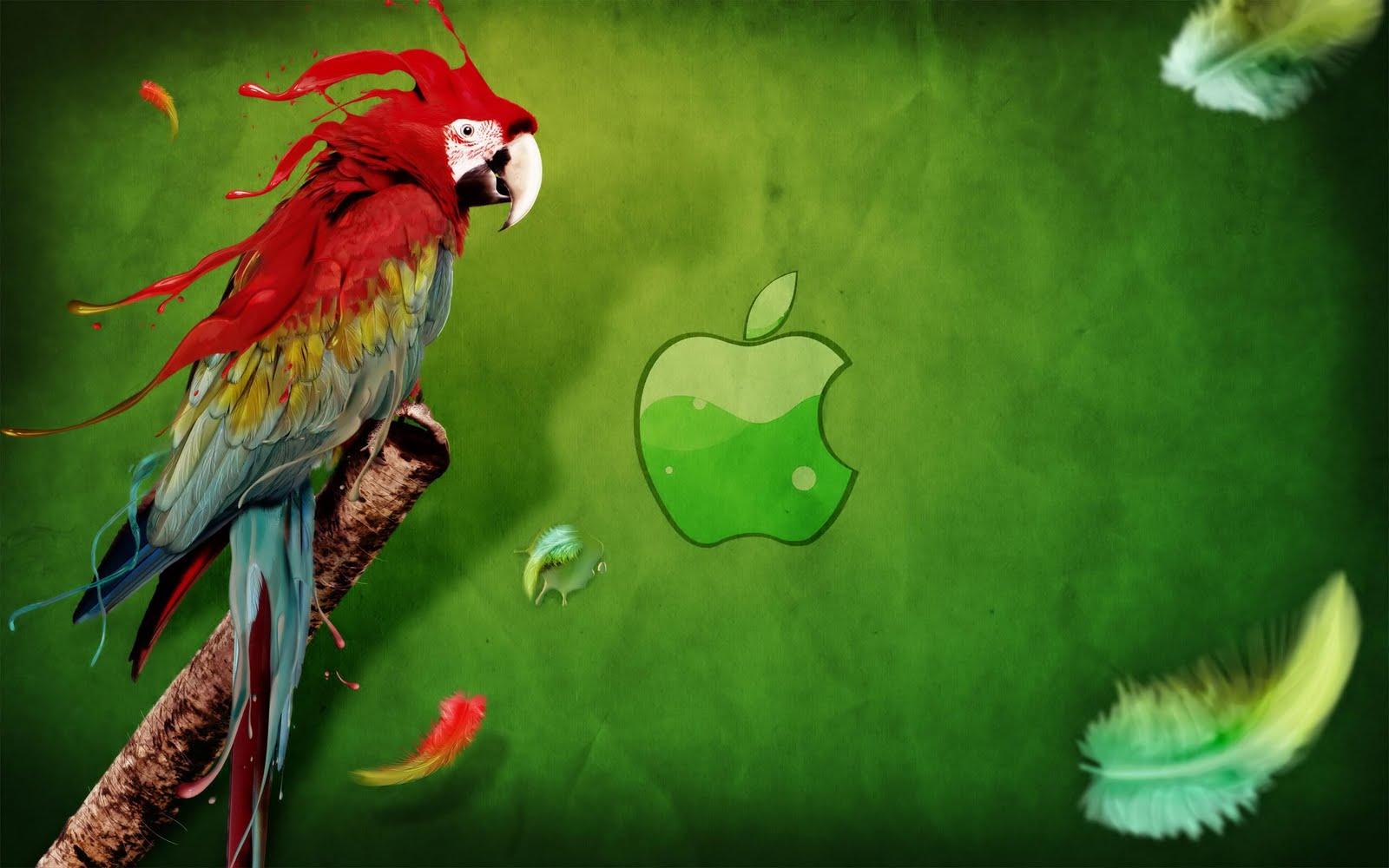 http://4.bp.blogspot.com/-6A3blU3r3Qk/TbcD-pT4h2I/AAAAAAAABhE/4OsToriMvvw/s1600/Apple_Parrot_hd_wallpaper.jpg