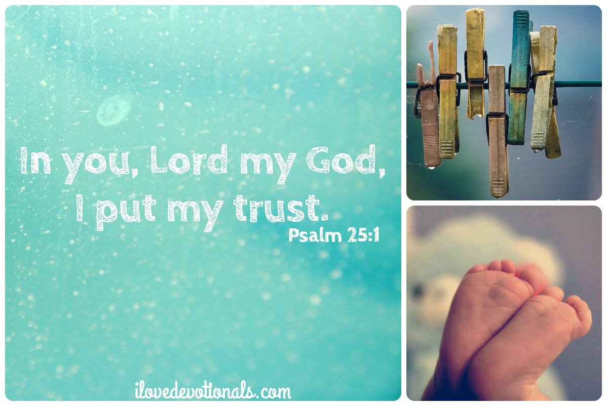 Bible verse about trust