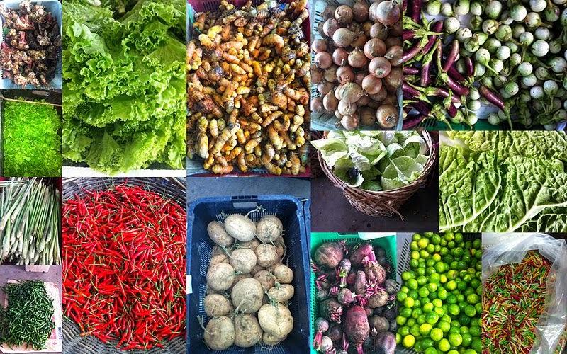 sayuran,vegetables,komoditi eksport indonesia,agraris