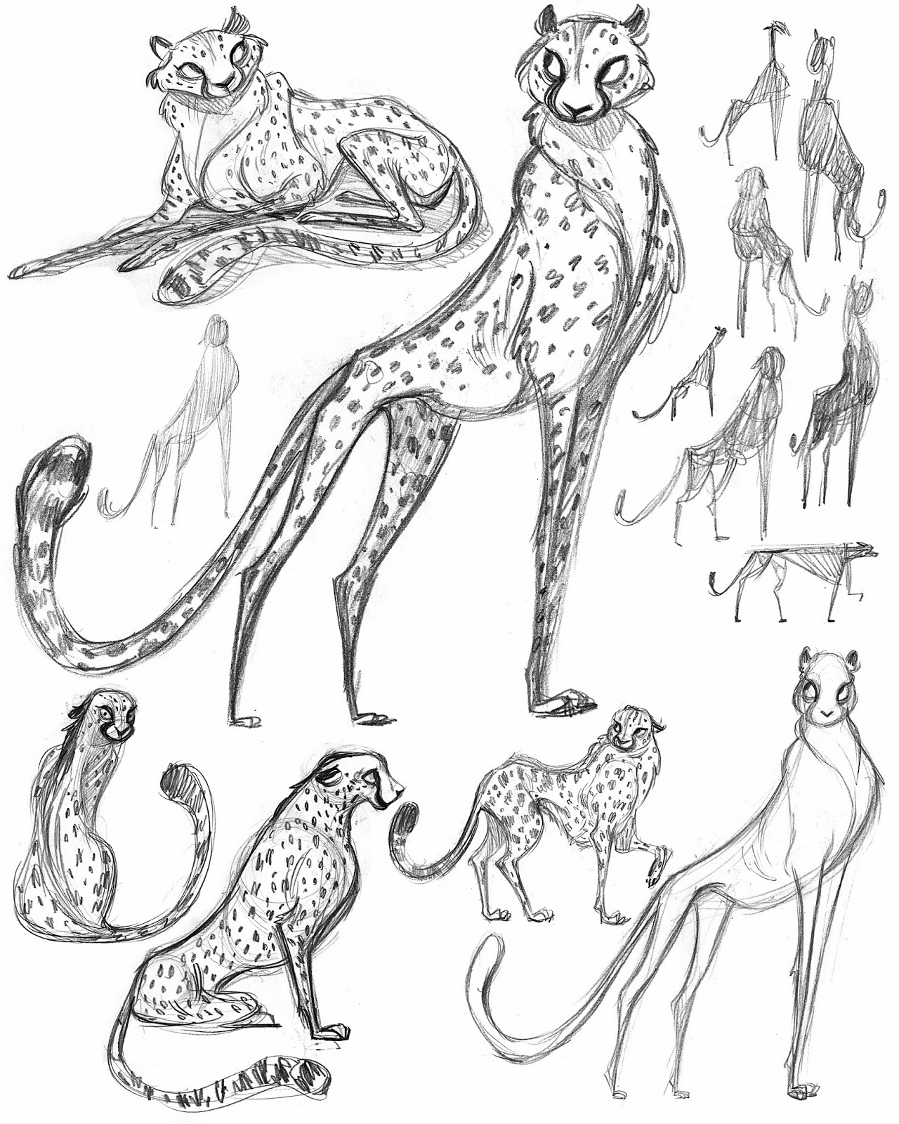 Character Design Process Drawing : Cachava you cheetah