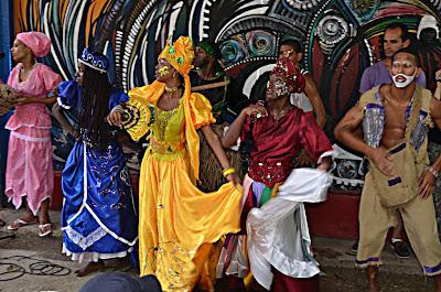 Rumba Havana rebeccatrex