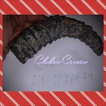 fossil tanduk kambing