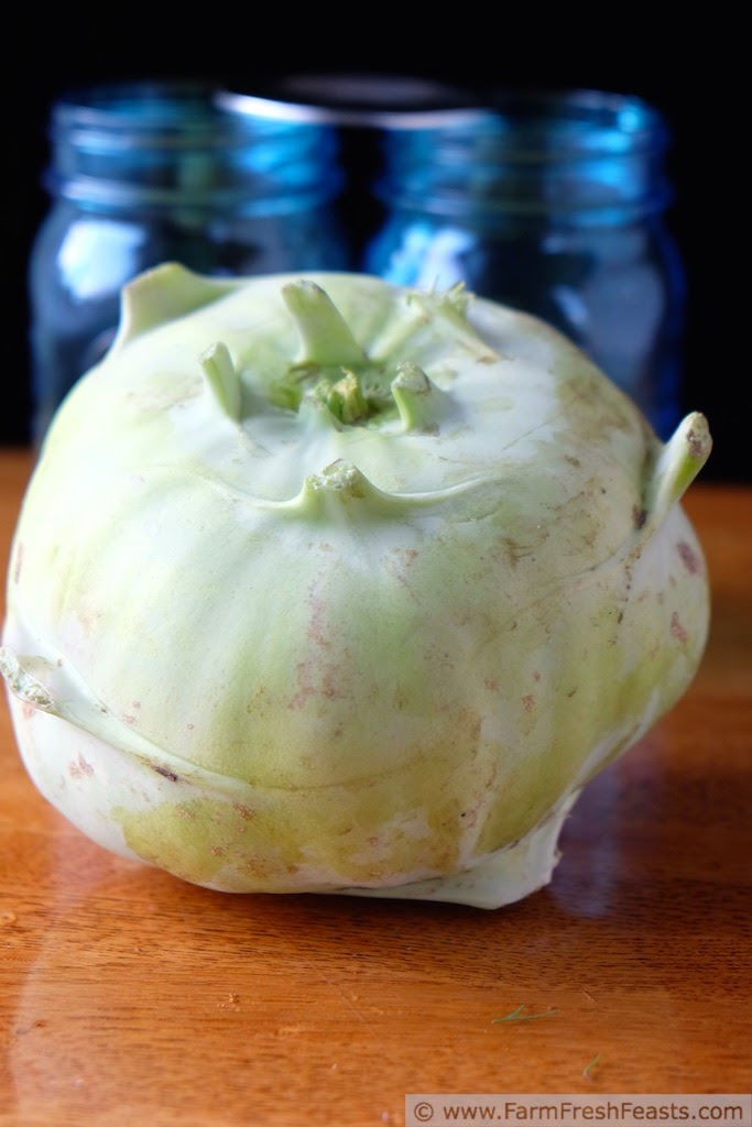 http://www.farmfreshfeasts.com/2014/11/spicy-asian-inspired-kohlrabi-pickle.html