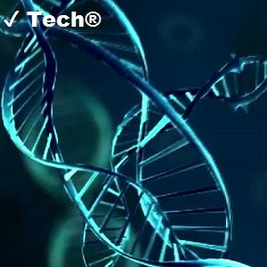 ✔ Tech®