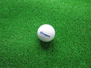 ゴルフボールに印刷されたプロネートのロゴタイプ