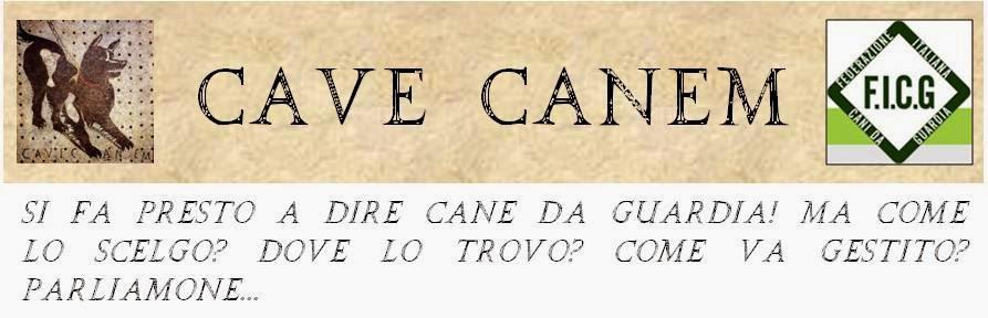 Cave Canem - AAA Cane da Guardia cercasi...