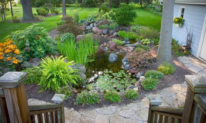 Backyard Garden Oasis : Backyard Oasis From Drab to Fab