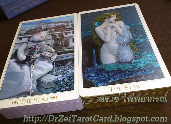 The Star ไพ่ดวงดาว ความหวัง ความฝัน Compare Size Thickness Width Length Tarot Cards Victorian Romantic Tarot Bohemian Cat Tarot เทียบขนาดไพ่ ทาโรต์ ไพ่ทาโร่ ไพ่แมว ความหนาไพ่ ความกว้างไพ่ ความยาวไพ่ยิปซี