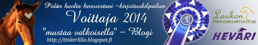 http://tinkerlilla.blogspot.fi/2014/04/pidan-huolta-hevosestani.html