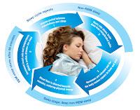 Mitos Yang Berhubungan Dengan Masalah Tidur