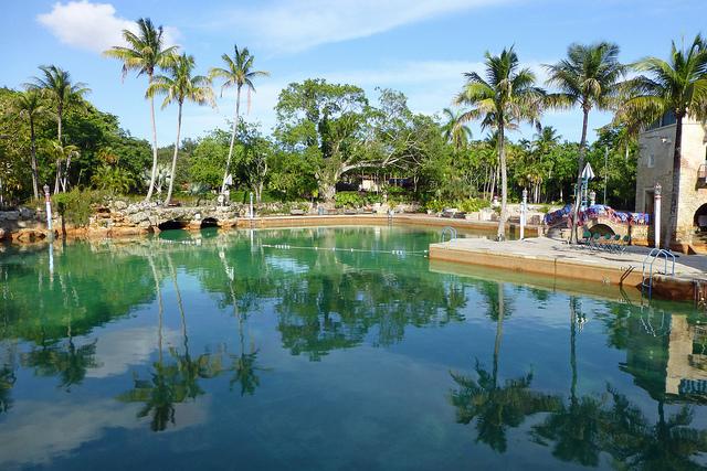 Venetian Pool Miami Artificial